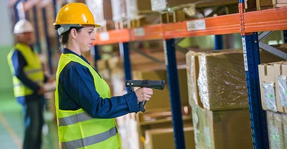 tips for efficient year end physical inventory counts dalby