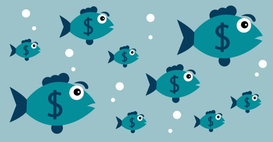school of fish with dollar signs on their sides swimming | benchmarking | Dalby Wendland & Co | CPAs | Business Advisors | Colorado | Grand Junction | Glenwood Springs | Montrose