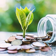 Plant growing from coins outside the glass jar on blurred green natural background for business and financial growth concept | energy and electric vehicle tax credits | Dalby Wendland & Co. | CPAs | Business Advisors | Colorado | Grand Junction | Glenwood Springs | Montrose
