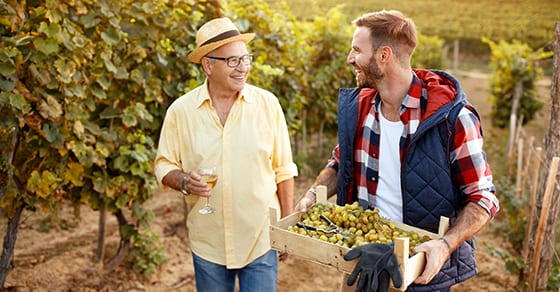father and son working in a vineyard together | transfer a family business | Dalby, Wendland & Co., P.C. | CPAs | Business Advisors | Grand Junction, CO | Glenwood Springs, CO | Montrose, CO